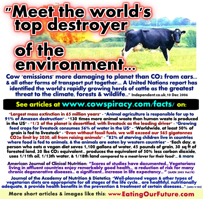 Meat Livestock Cattle Cows Animal Agriculture Farms Causes Climate Change Greenhouse Gas Truth Pollution DeForestation Desertification Methane Famine Waste Water Fuels Grains Food Arable Land Vegan Vegetarian Healthy Solution Facts Stats Best Memes