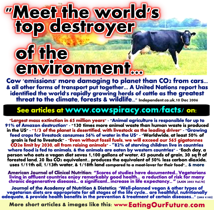 the major causes of the problem of global warming in our world today The causes and negative effects of global warming essay 729 words | 3 pages global warming is one of the biggest problems facing our world today, that threatens to.