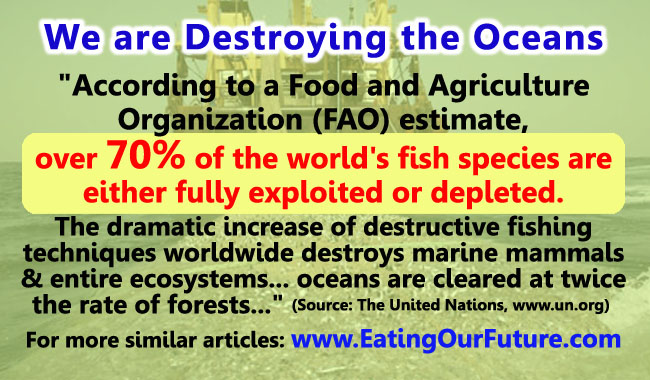 United Nations UN FAO Report Study Overfishing Fishing Boat Trawlers Techniques Destroys Destroying Oceans Seventy Percent 70% Stop Eating Fish Species Stocks Exploited Depleted Marine Mammals Aquatic Ecosystems Deserts Go Vegan Vegetarian