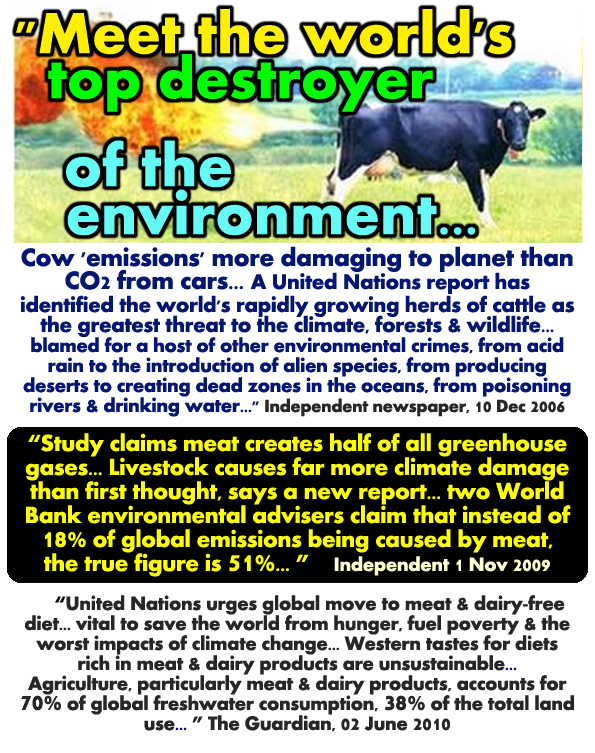United Nations Report Why Meat Eaters Bad Wrong Causes More Climate Change Pollution Carbon Footprint than Cars Transport Animal Agriculture Pollutes Wastes Resources How Vegans Veganism Vegetarianism Good Best Better Beneficial Healthy