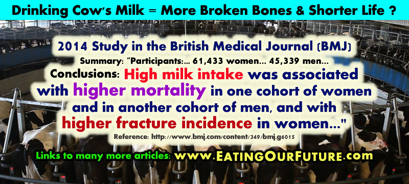 Science Quotes Facts health disease problems risks dangers drinking eating cow dairy cow's milk consumption studies show more higher increased osteoporosis bone fractures weak broken bones shorter life mortality humans people sick ill diseased reports study