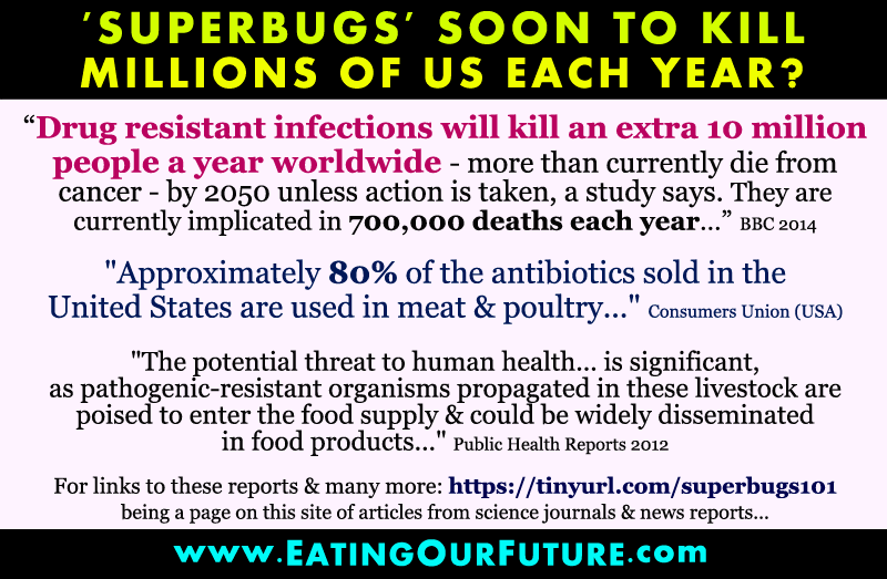 Best Quotes Memes Facts How Much What Amount percentage % Antibiotics Antibiotic used in Animal Agriculture Meat Poultry Superbug Resistance Infectious Diseases Disease causing Superbugs Bugs Germs Microbes Bacteria Medicines Studies Reports