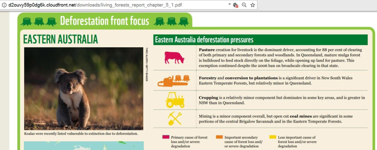 Causes of Deforestation Land Clearing for Pasture for Livestock Beef Cattle Sheep Eating Meat Production Consumption in Queensland QLD Australia Queensland Chart 88% 90% per cent figures data from World Wide Fund For Nature WWF Living Forests report