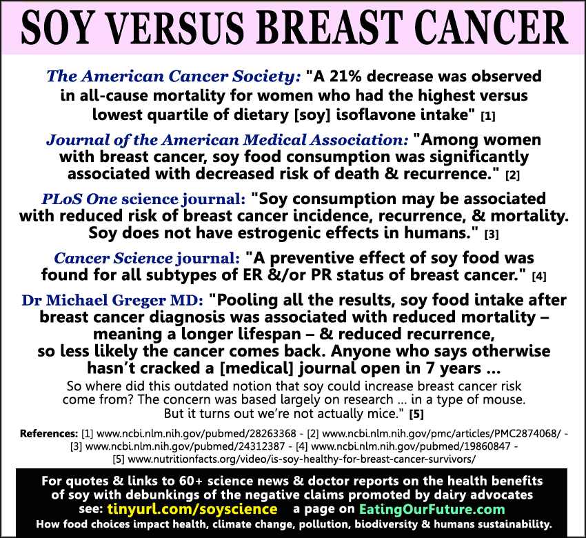 Science Soy Food Milk Prevents Reduces Causes Raises Reverses Breast Cancer Risk Rates Scientific Facts Medical Studies Journals Quotes Reports Debunk Claims Myths Risks Dangers Benefits Good Women's Female Vegan Health Debunked
