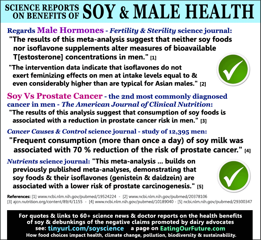Science Reports Quotes Debunk Why How Eating Tofu Soy Food Foods Beans Milk Healthy Not Bad Dangerous Good Male Men's Health Benefits Effects Hormones Testosterone Estrogen Reduce Increase Prostate Cancer Man Boobs Moobs Debunked Studies