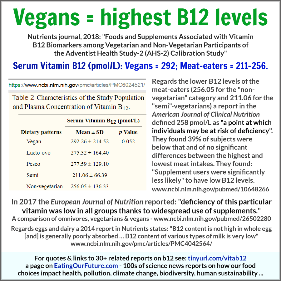 B12-Vegans-highest-Nutrients-2018-v02-900wh-PNGncr