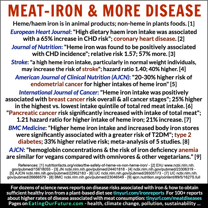 Best Good Science Medical Health Facts Studies Reports Non Heme Haeme Iron Deficiency Anemia Animal Red Meat Plant Foods Products Compare Omnivores Vegans Vegetarians Healthiest Diets Comparison Cancer Heart Disease Diabetes Debunked Memes Quotes